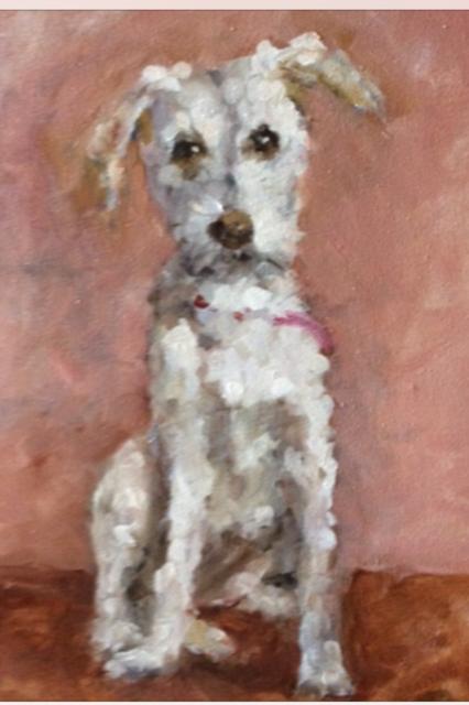 Hondenportret piet groenendijk